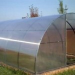 Tunnel type greenhouse